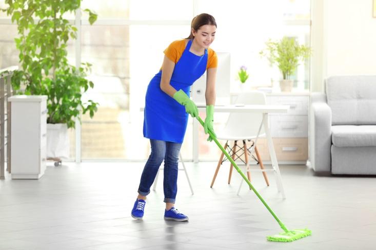 4 Alasan Penyebab Rumah Anda Banyak Serangga