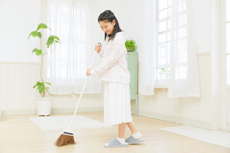 SOS - Tips Membuat Lantai Dapur Bersih dan Bebas Serangga